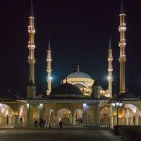 Мечеть «Сердце Чечни». г.Грозный. :: Леонид Сергиенко