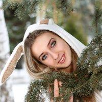 Заяц зимой :: Сергей Удовенко