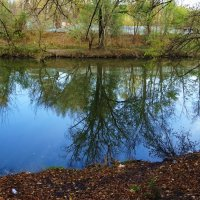 Отражение в реке Темерник :: татьяна