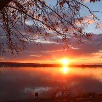 В прощальном свете :: владимир тимошенко