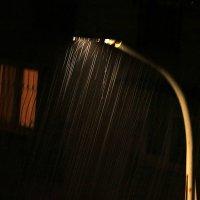 Дождь льет стеной :: Светлана