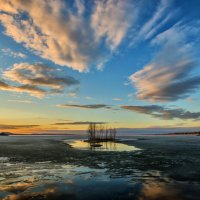 Апрельский вечер на моем любимом острове :: Dmitry Ozersky