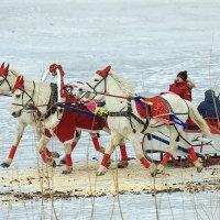 Три белых коня, три белых коня.... :: Сергей Черных