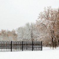 вспоминая о зиме :: лиана алексеева