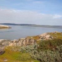Залив Титовка :: Nika Pelex