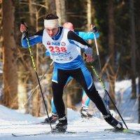 О лыжах :: Евгений Седов