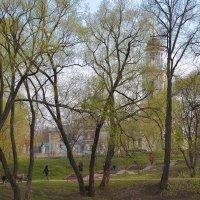 Весна в парке :: Александра