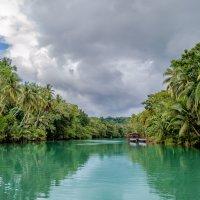 Река Лобок, остров Бохол, Филиппины. :: Edward J.Berelet