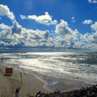 Балтийский берег в контровом свете :: Сергей Карачин