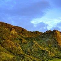 Сосновые скалы. :: Штрек Надежда