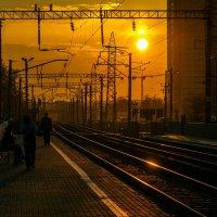 В лучах заката :: Виталий Павлов