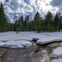 Нежданная зима :: Vladimbormotov