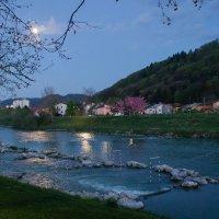 Тихий вечер на реке Савиня. :: Надежда