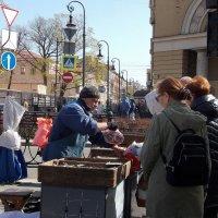 Корюшку продают! :: Фотогруппа Весна-Вера,Саша,Натан