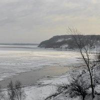 Волга под Нижним Новгородом :: Владимир Шамота