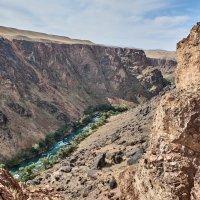 Казахстан. Река Чарын :: Минихан Сафин
