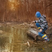 Сказочное болото :: Даниэль Быстров