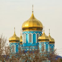 Золотые купола :: Елена Верховская