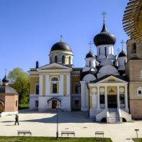 Троицкий храм и Успенский собор :: Георгий А