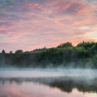 утро на пруду :: лиана алексеева
