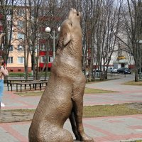 Одинокий волк :: Вик Токарев