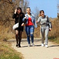 Слышь, подруга, а давай мы тебя всю в лохмотья раздерём! :-) :: Андрей Заломленков