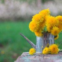 Весна :: Дина Горбачева