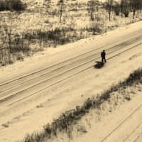 долгая дорога :: Елена Минина