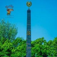 Мемориальный комплекс «Памяти павших в Великой Отечественной войне 1941-1945 годов» :: Руслан Васьков