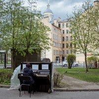 Вот он какой, рояль в кустах! :: Игорь Свет