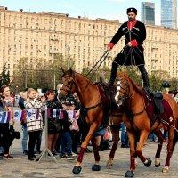 Трюки на лошадях. :: Татьяна Помогалова