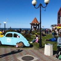 Балтийский берег, г. Зеленоградск, Калининградская область :: Юрий Шамсутдинов