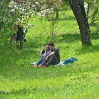 Весна... Природы и любви цветенье... ) :: Тамара Бедай