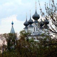 Свято-Воскресенский женский монастырь города Мурома :: Анатолий Бушуев