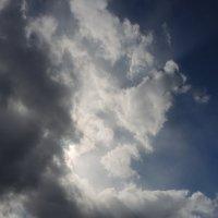 скоро дождь :: sv.kaschuk