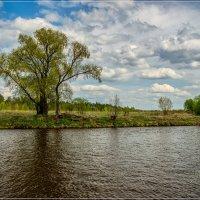 Облачный Май 4 :: Андрей Дворников
