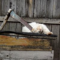 Всё, идите работайте без меня! :: Светлана Рябова-Шатунова