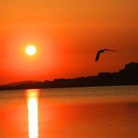 И проснулось над озером солнце! :: Штрек Надежда