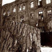 Руины. :: Анфиса