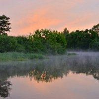 На рассвете туман поднимается :: Татьяна Каневская