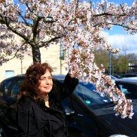 Приветствую тебя,весёлая весна! :: Mila .