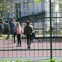 Мы играем в волейбол :: Дмитрий Никитин