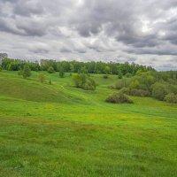 Зелёный май :: Владимир Жданов