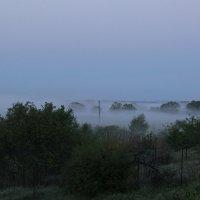 Туман :: Марина Потапова