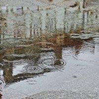 Дождь на Невском :: Елена