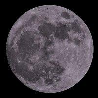 Moon :: Сергей Сердечный