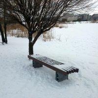 Зима :: Агриппина