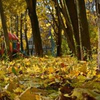 Сентябрь (4) :: Игорь Маслин