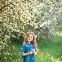 Цветущий сад :: Ирина Ашутова