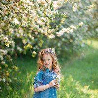 Цветущие сады :: Ирина Ашутова